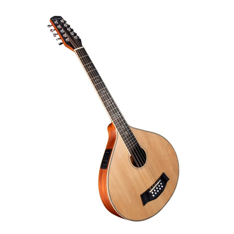 Cittern 10-string with pick-up - based on our guitar cittern