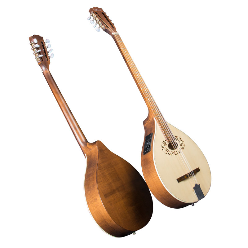 DULCISTER (Dulcimer-Cittern) with pick-up