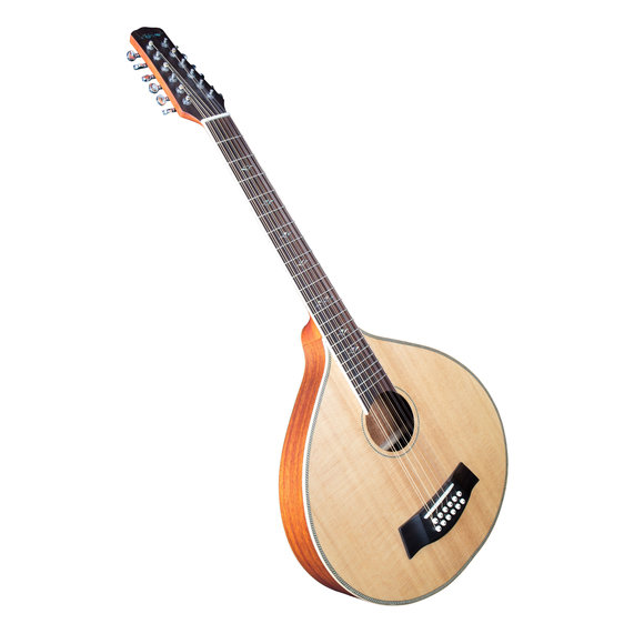 Guitarcittern 12 String