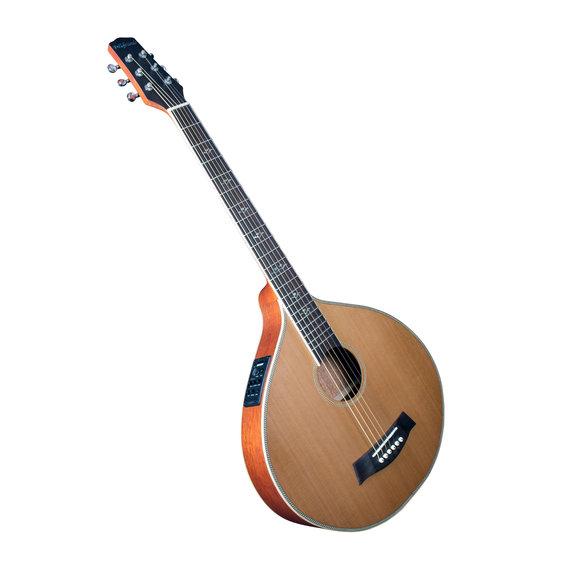 Gitarrencister 6 Saiten - mit Tonabnehmer