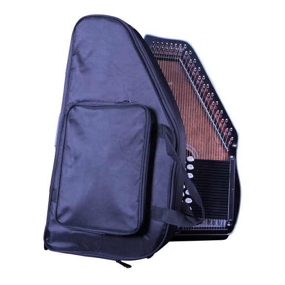 Sturdy travel case for Autoharp/Autochord