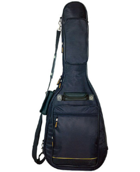 bag for parlor guitar